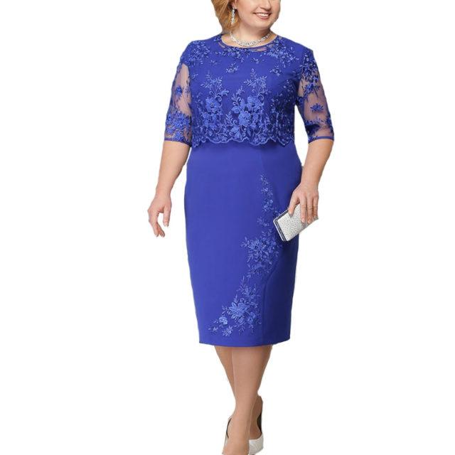 Women's Plus Size Lace Decorated Dress