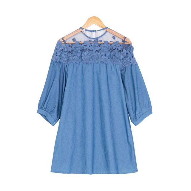 Women's Plus Size Denim Dress With Floral Embroidery